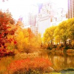 「枯葉(Autumn Leaves)」が収録されている有名なジャズCDのご紹介!